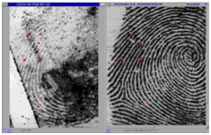 BioLink AFIS/APIS | Key Features | Automated Fingerprint and